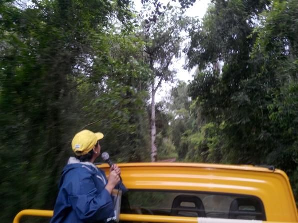 Guiding i regnskogen