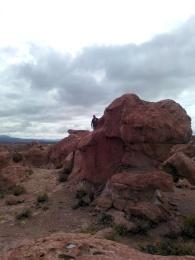 Thomas på stein