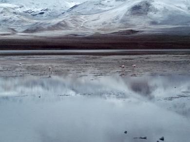 Lagune som speil