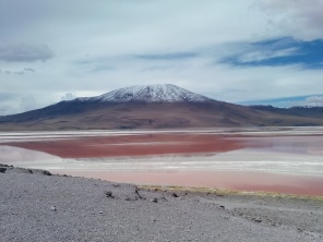 Den røde lagune