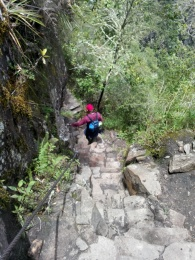 Bratt ned fra Wayna Picchu