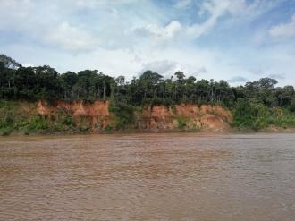 Elvebredden i Tambopataelven
