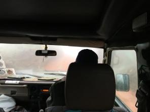 Skogsvei i tåka
